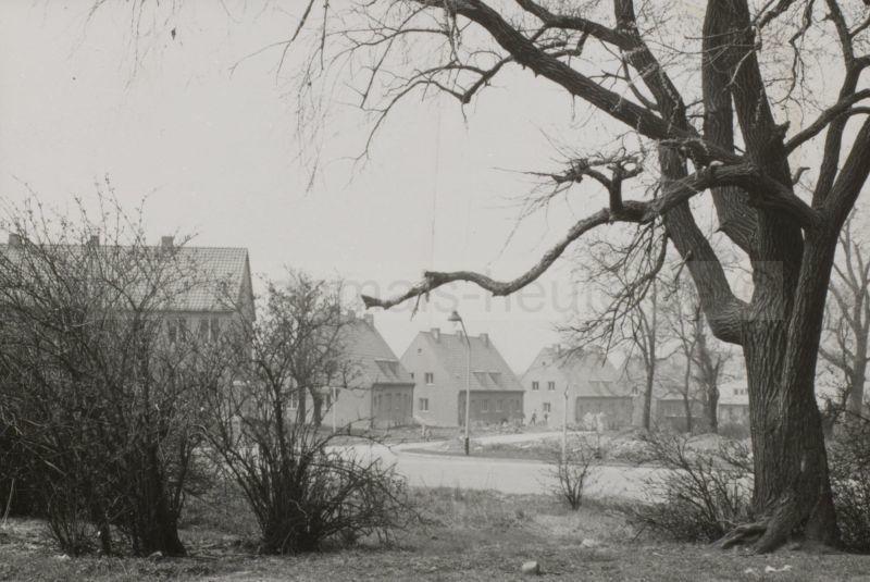 Siedlung an der Dorneburg, im Vordergrund die Holsterhauser Straße, April 1956, Foto Stadtarchiv Herne